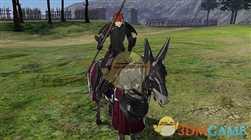 【火焰纹章:风花雪月】圣骑士兵种说明