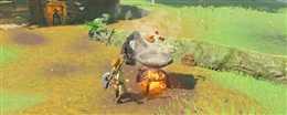 【塞尔达】怎么烹饪