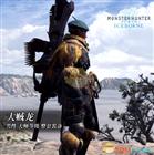 【怪物猎人:世界】冰原dlc大师等级防具-大贼龙男装视频分享