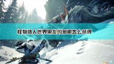 【怪物猎人:世界】黑龙的邪眼获得途径介绍